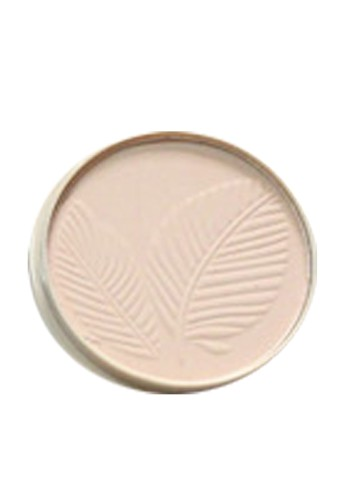 Пудра Mineral Matt Powder B8, 15 г Parisa Cosmetics